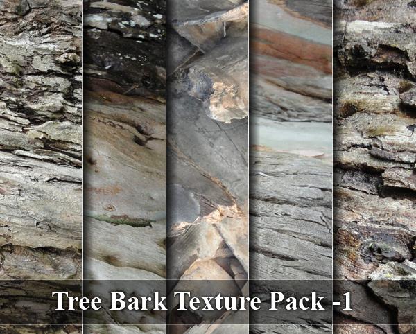 Tree Bark Texture 01