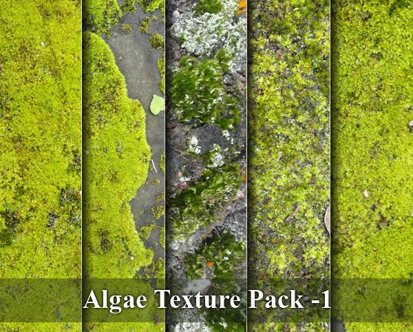 Algae Texture Pack -1