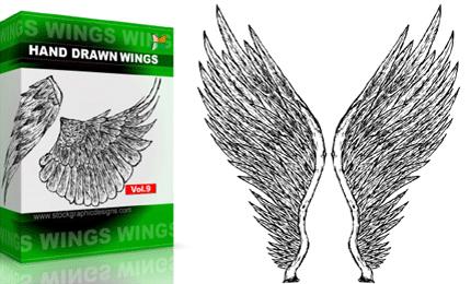 Hand Drawn Wings – Set.1 | Vol : 9